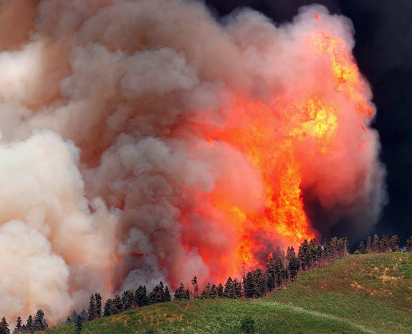 Colorado forest fires | Denver Public Library History