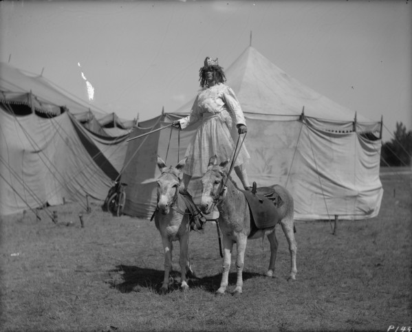 circus sites